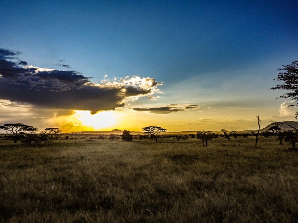 Sunset view Serengeti - Tanzania