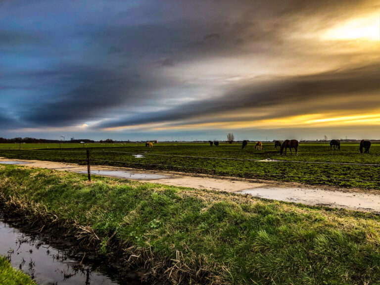 Runningview Breda