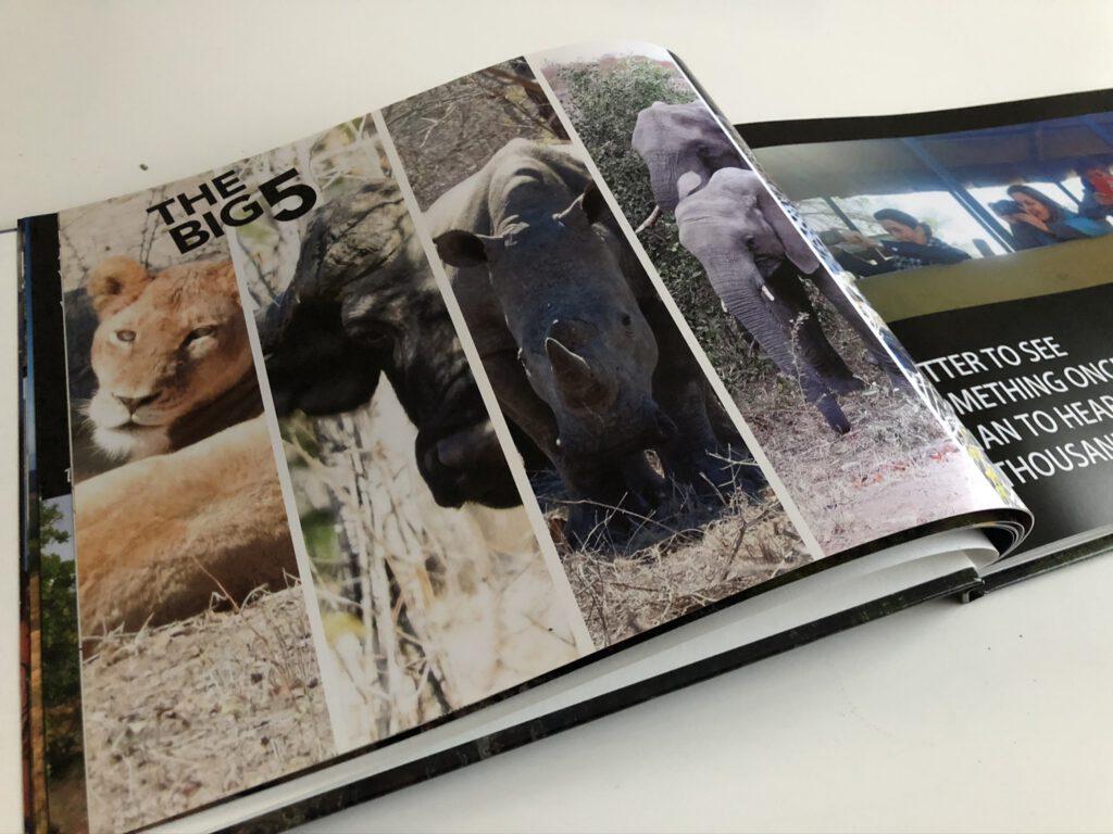Fotoboek inspiratie - Zuid-Afrika Big5