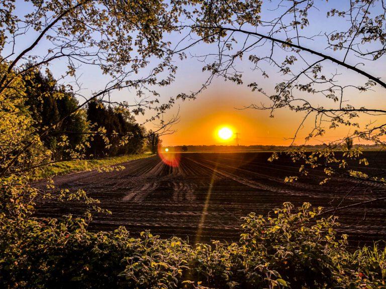 Breda - zonsopgang Hartelweg